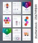 set of infographics  flyer and... | Shutterstock .eps vector #256749844