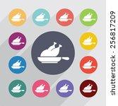 chicken grill circle  flat... | Shutterstock . vector #256817209