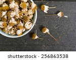 dried chamomile flowers  herbal ... | Shutterstock . vector #256863538