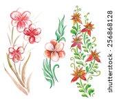 watercolor beautiful flowers... | Shutterstock .eps vector #256868128