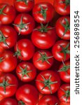 red tomatoes background. top... | Shutterstock . vector #256898554