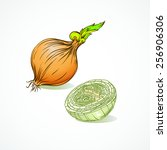 onion | Shutterstock .eps vector #256906306