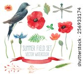 Watercolor Summer Set With...