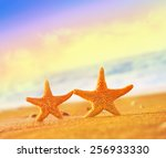 summer beach. two starfish on... | Shutterstock . vector #256933330