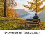 man sitting on a bench enjoying ... | Shutterstock . vector #256982014