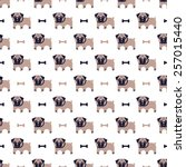 pug and bone pattern | Shutterstock .eps vector #257015440