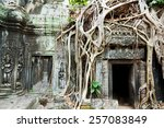 ta prohm temple covered in tree ... | Shutterstock . vector #257083849