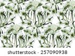 watercolor cumin pattern | Shutterstock . vector #257090938