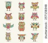 owls characters set | Shutterstock .eps vector #257158348
