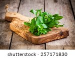 Bunch Of Fresh Organic Basil I...