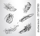 set of feathers in an ornament | Shutterstock .eps vector #257185783