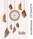 feather design over white... | Shutterstock .eps vector #257244274