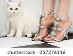 White Persian Cat Standing...