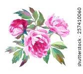 three beautiful watercolor... | Shutterstock .eps vector #257410060