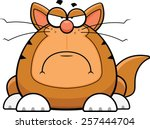 Cartoon illustration of a funny cat with a grumpy expression.  - stock vector