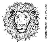 vector lion hand drawn...   Shutterstock .eps vector #257492320