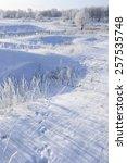 Winter Landscape Trees In Fros...