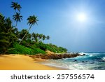 tropical beach with palm in sri ... | Shutterstock . vector #257556574