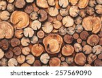 Pile Stacked Natural Sawn...