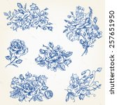 set of vector floral design... | Shutterstock .eps vector #257651950