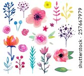 hand painted watercolor flower. ... | Shutterstock .eps vector #257667979