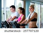 beautiful group of young women... | Shutterstock . vector #257707120