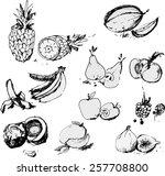vector illustration   bunch of... | Shutterstock .eps vector #257708800
