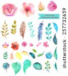 watercolor floral collection ... | Shutterstock .eps vector #257732659