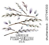 watercolor pussy willow set.... | Shutterstock .eps vector #257749333
