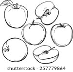 apple | Shutterstock .eps vector #257779864