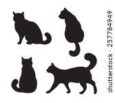 vector black cats illustration... | Shutterstock .eps vector #257784949