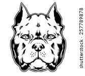 pit bull. american bully. | Shutterstock .eps vector #257789878