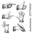 vector hand frawn illustration... | Shutterstock .eps vector #257793010