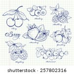 icons set of hand drawn berries ... | Shutterstock .eps vector #257802316
