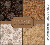 seamless vintage floral... | Shutterstock .eps vector #257847010