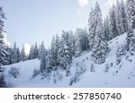 Panorama Of A Winter Landscape...