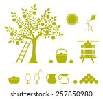 collection of vector apple...