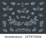 the set of hand drawn... | Shutterstock . vector #257973356