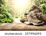 shoes in green forest  | Shutterstock . vector #257996093