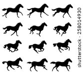 horse run cycle | Shutterstock .eps vector #258014930