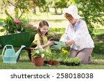 happy grandmother with her... | Shutterstock . vector #258018038