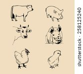 vector set of farm animals hand ... | Shutterstock .eps vector #258125240