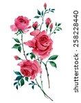 watercolor illustration of... | Shutterstock . vector #258228440