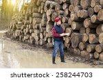 Young Lumber Engineer Standing...