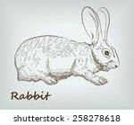 detailed rabbit on background.... | Shutterstock .eps vector #258278618