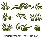 olive branch set on white... | Shutterstock .eps vector #258285164