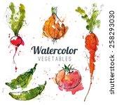 set of watercolor vegetables | Shutterstock .eps vector #258293030