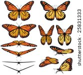 monarch butterfly vector art in ...