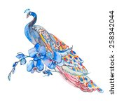 beautiful peacock on white... | Shutterstock . vector #258342044
