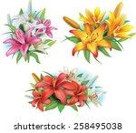 arrangement from lilies flowers | Shutterstock .eps vector #258495038